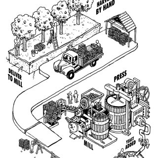 Illustration of apple cider making process