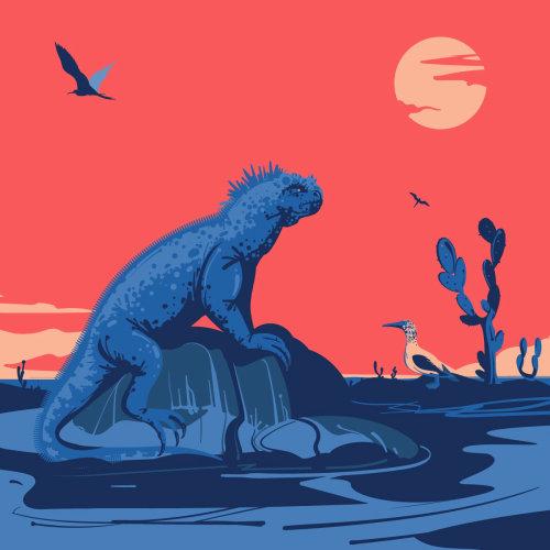 海鬣蜥数字绘画