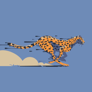 cheetah, speed, spots, cat, africa, fast, animals