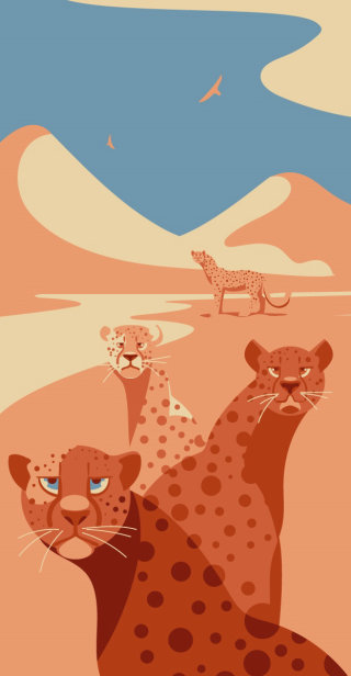 cheetahs, animals, wildlife, africa, sun, sunset, cats, safari, blue, vector, animals