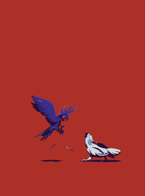 Dessin de combat de cacatoès et perroquet par Nikolai Senin