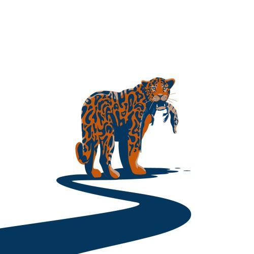 Wildlife illustration of Jaguar