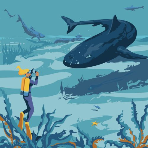 Diving with prehistoric creatures