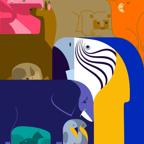 Pop illustration of Zoo by Nikolai Senin