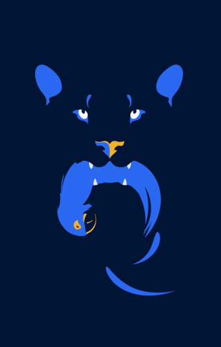 hunter, pantera, macaw, bird, animal, vector, cat, jaguar, night