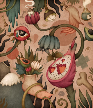 Illustration of herbs and weird dragon fruits
