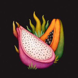Illustration of a dragon and papaya fruit