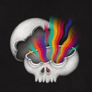 Skull radiation art work