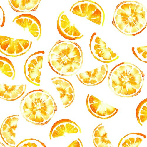 Illustration of Orange slices