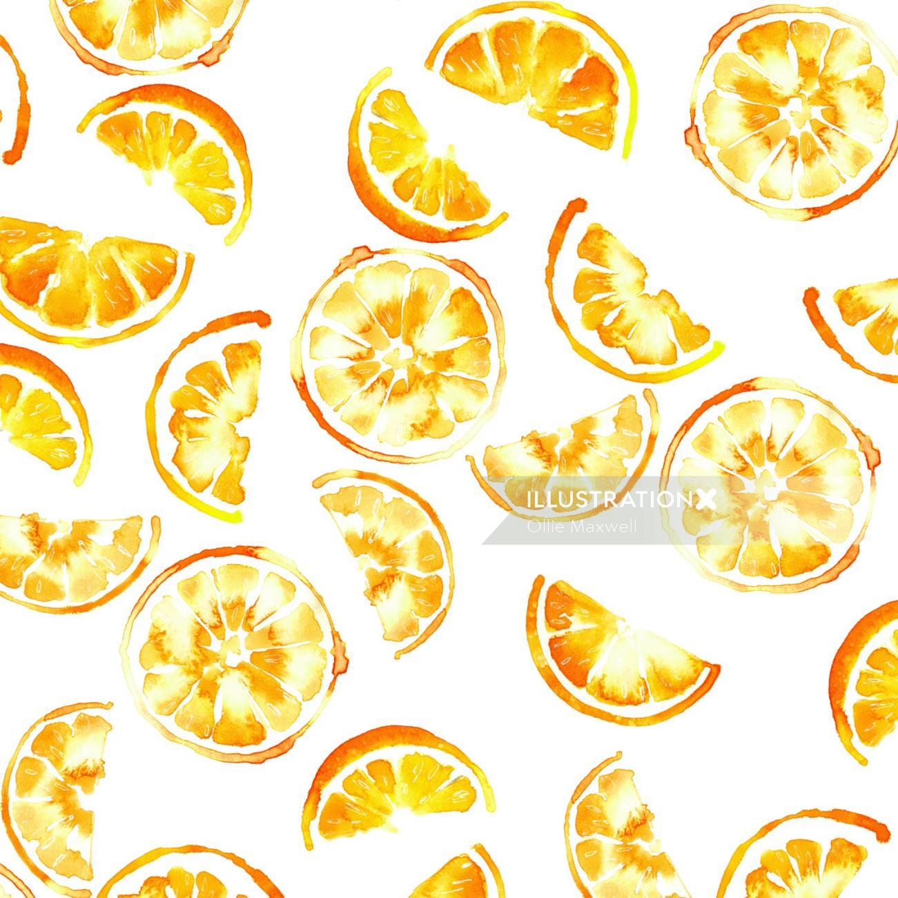 Illustration of Orange slices