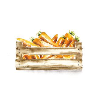 illustration of carrots in basket