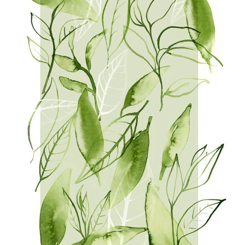 Watercolour art of green tea leaves