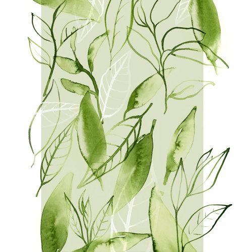 绿茶叶的水彩艺术