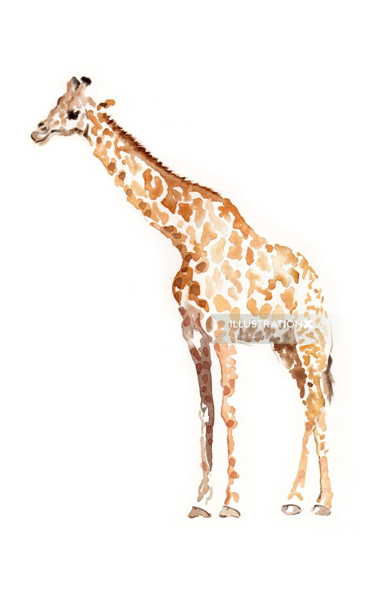 Beautiful art of Giraffe