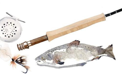 多种捕鱼设备