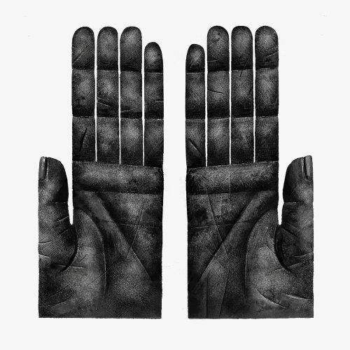 Illustration en noir et blanc des mains de singe