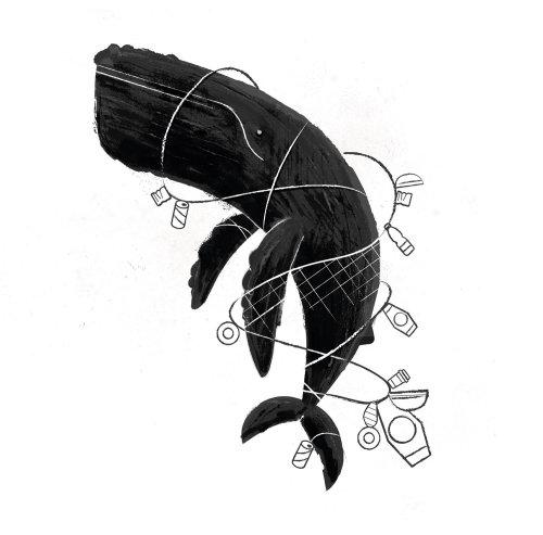 Ghost Fishing dessin noir et blanc