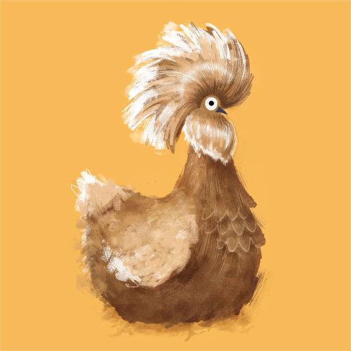 Animais frango polonês dourado