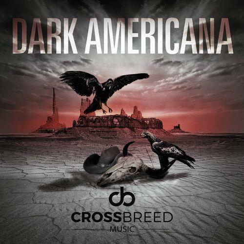 Dark Americana Graphic