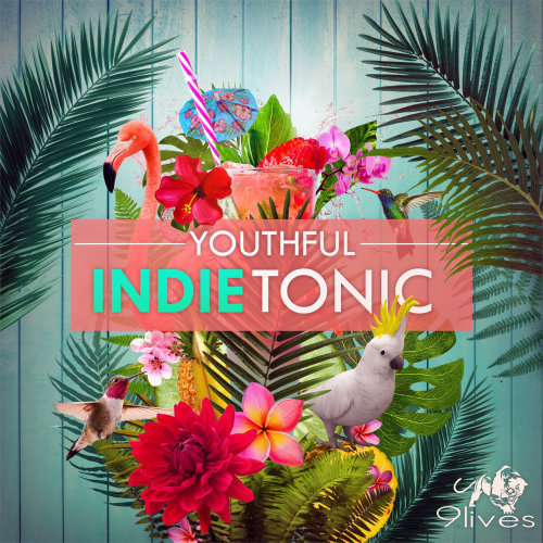 Youthful indie tonic graphic