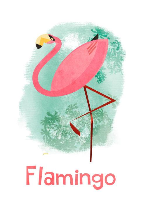 Graphic Flamingo
