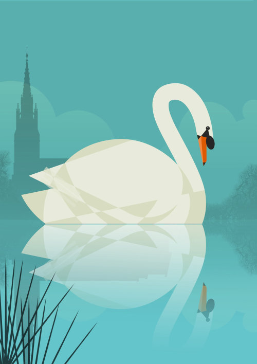 Vector illustration of Tundra swan