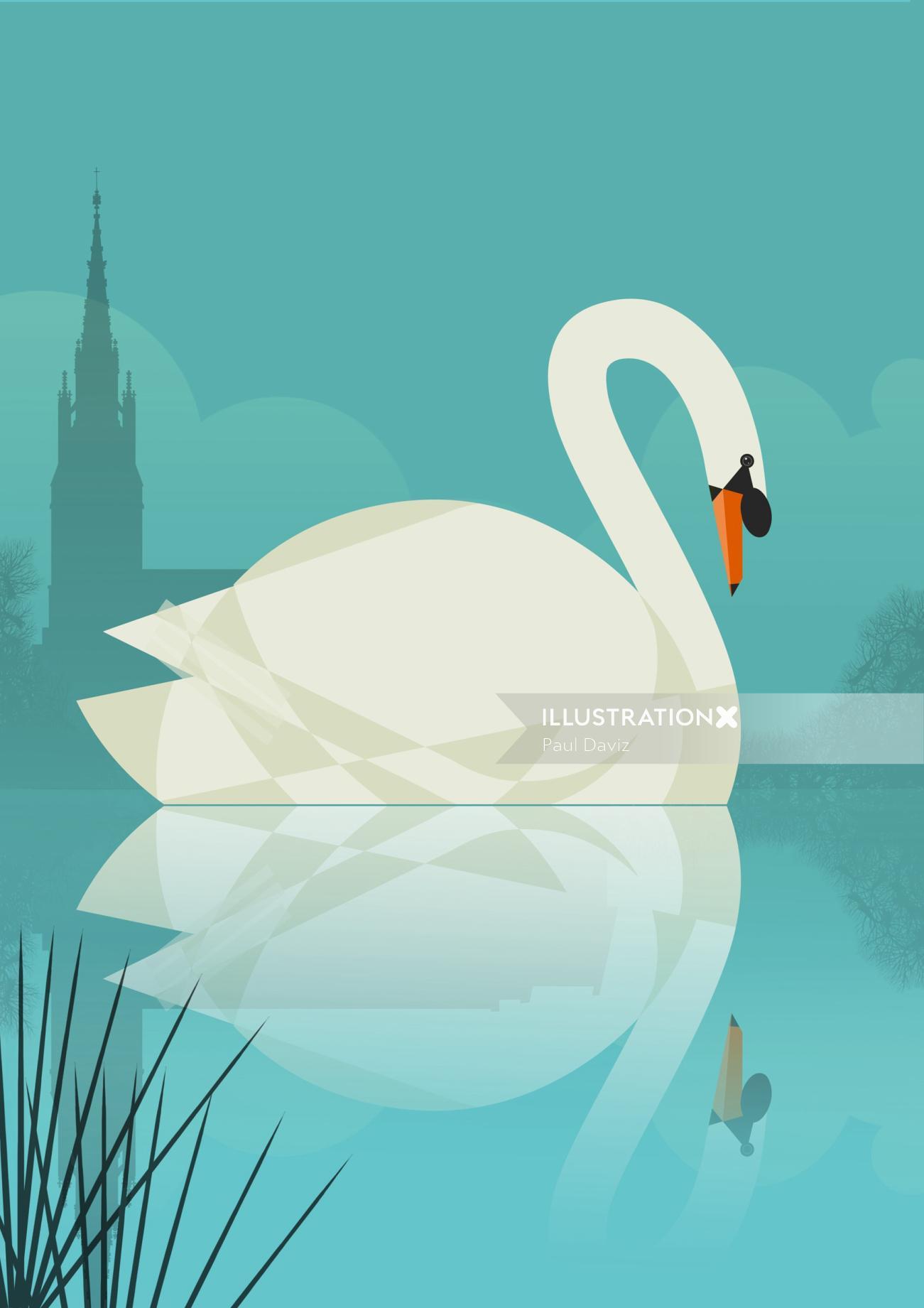 Vector illustration of Tundra swan