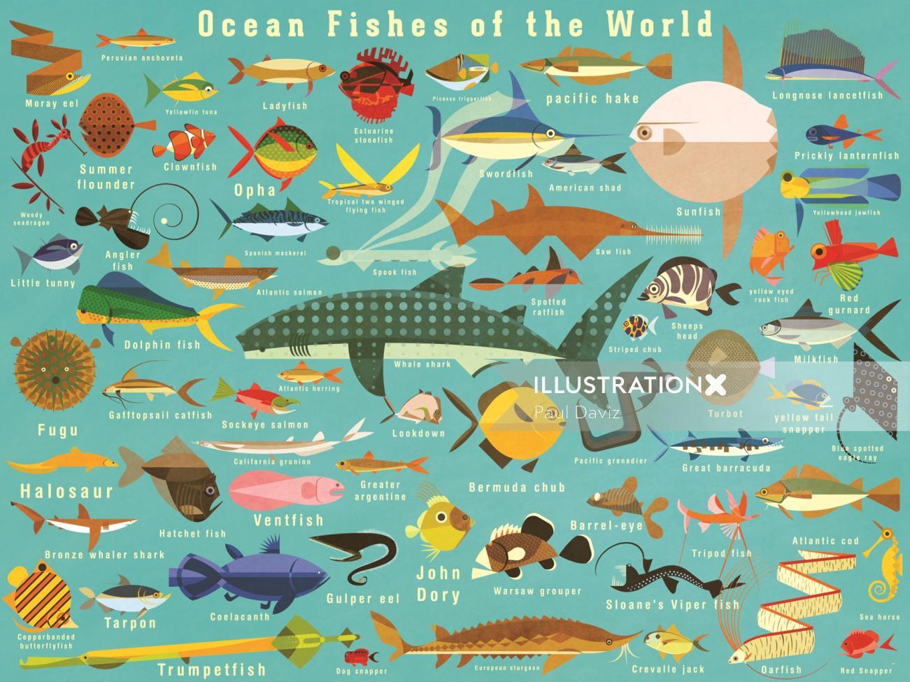 Fishes wall art by Paul Daviz