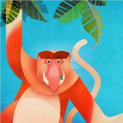Children Monkey in forest