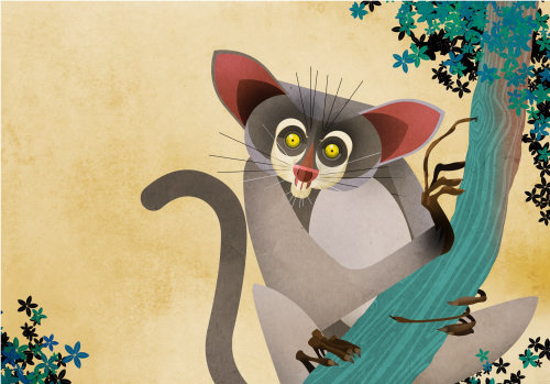 Ilustración del mono de la selva