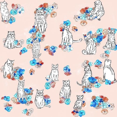 floral and cat illustration