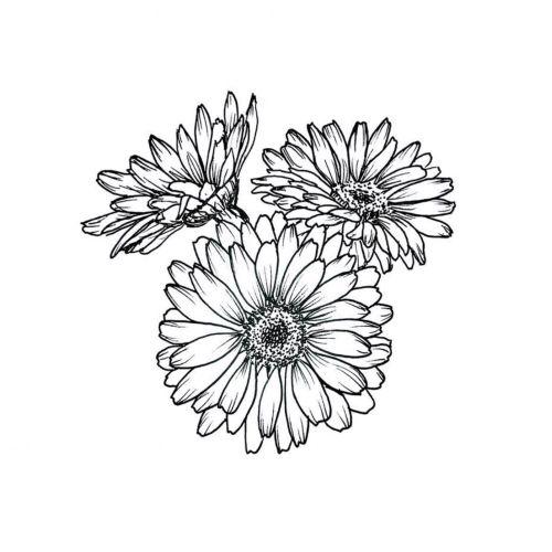 Line artwork flowers