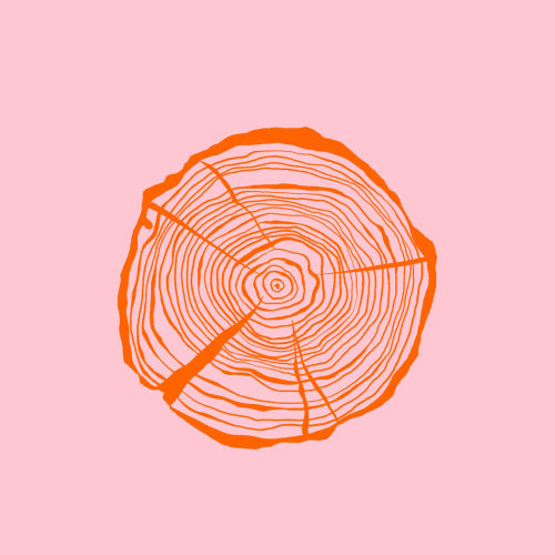 Contemporary art of Tree ring