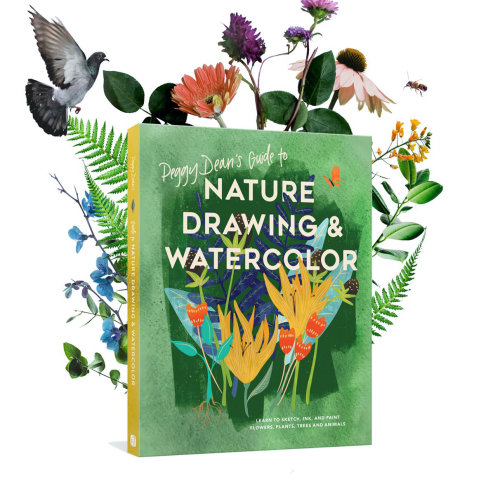 Nature drawing and watercolor lettering art on book cover