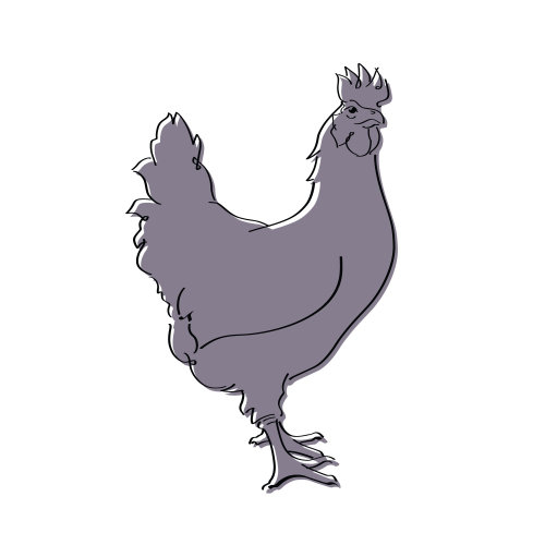 Rooster Pictogram