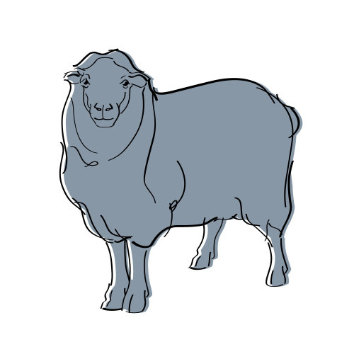 sheep pictogram