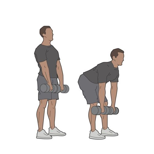 Dumb bell workout infographic