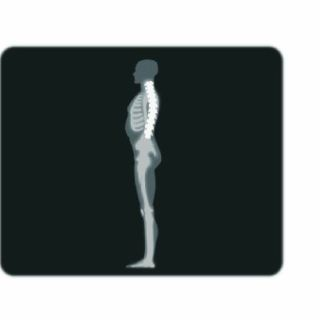 An X-ray illustration of man while standing