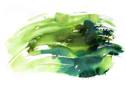 illustration de la nature aquarelle