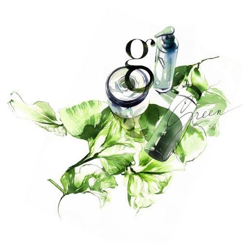 watercolor illustration of nature serum