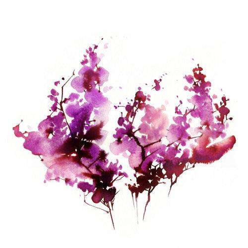 illustration de fleurs roses nature lâche