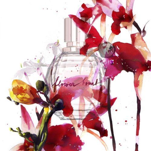 watercolor art of perfume