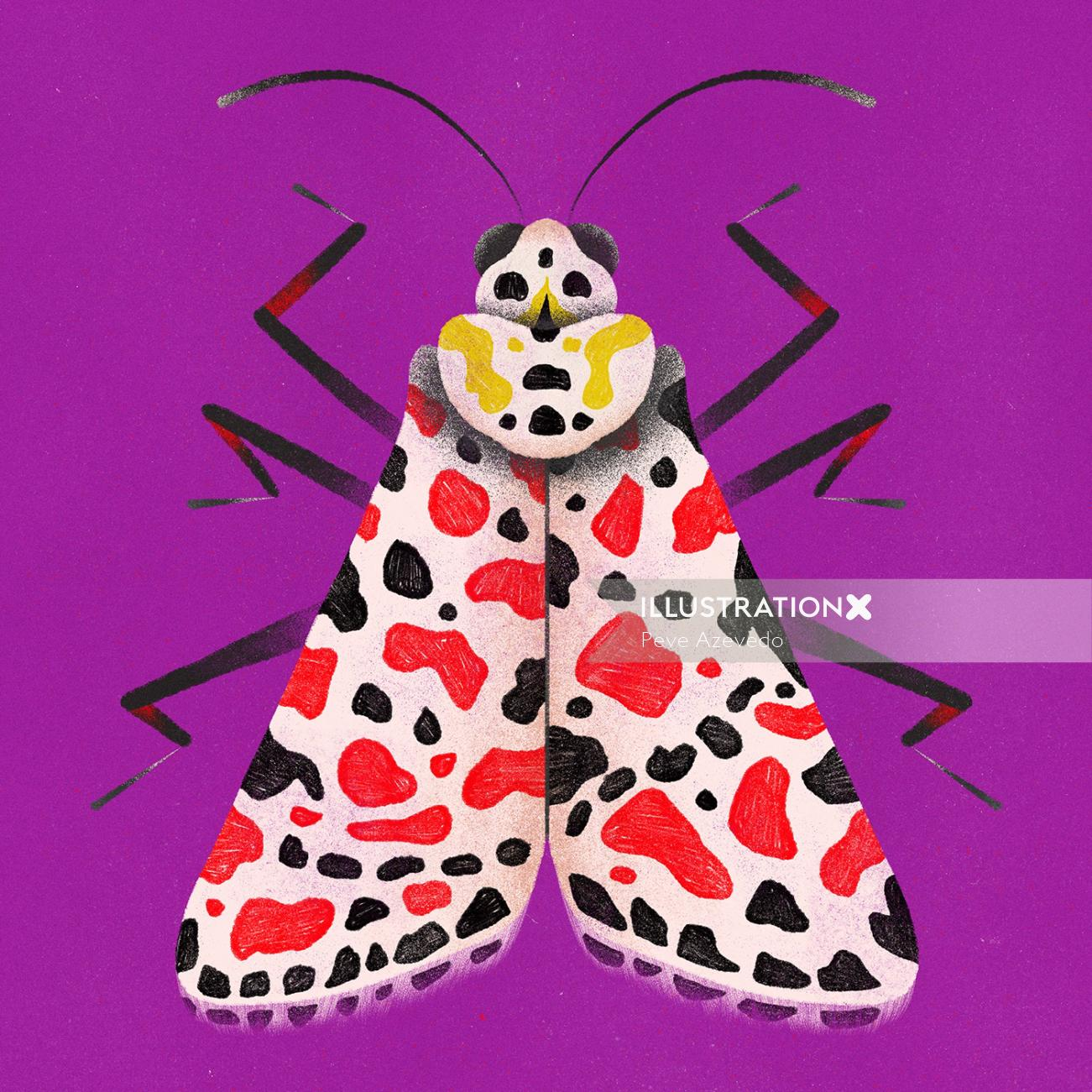 Animals patterned butterfly
