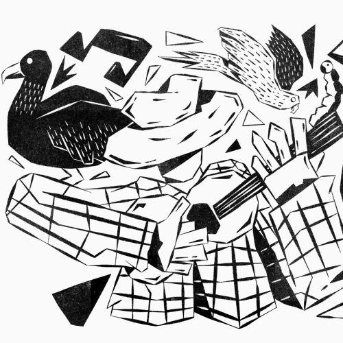 Animals ducks and birds