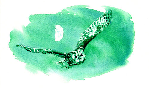 colored painting of An eagle owl in night sky