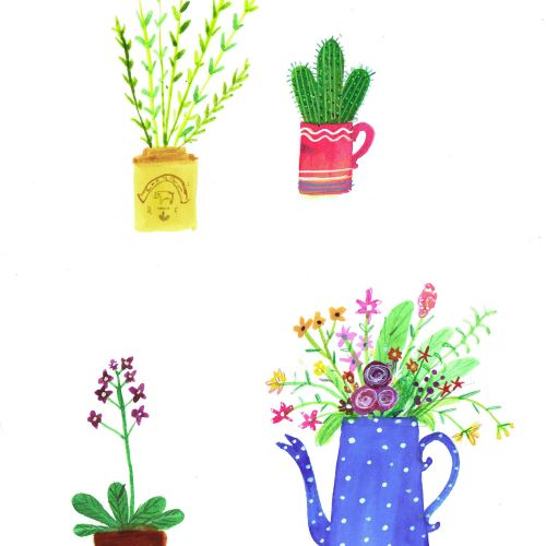 Illustration of plants