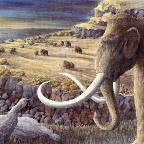 Richard Phipps Nature