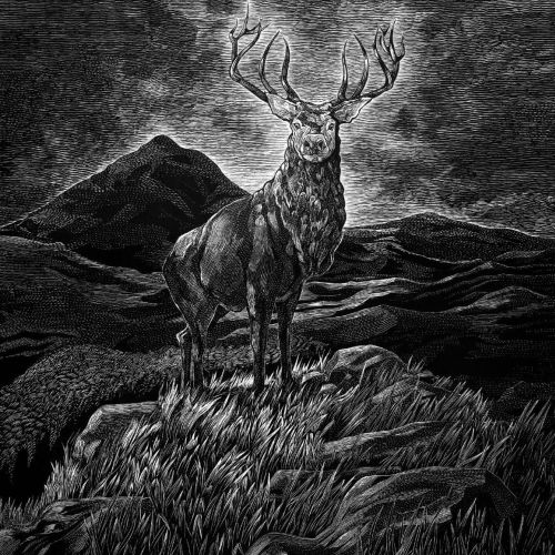 Graphic illustration of Stag