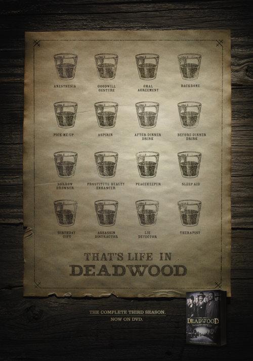 C'est la vie dans le bois mort