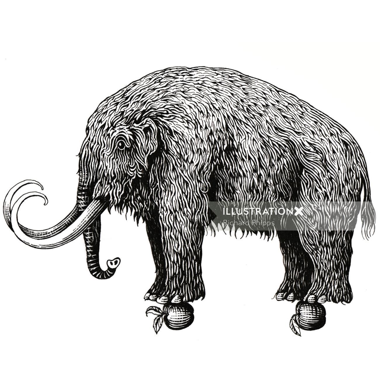 Mammoth Black and white Graphic